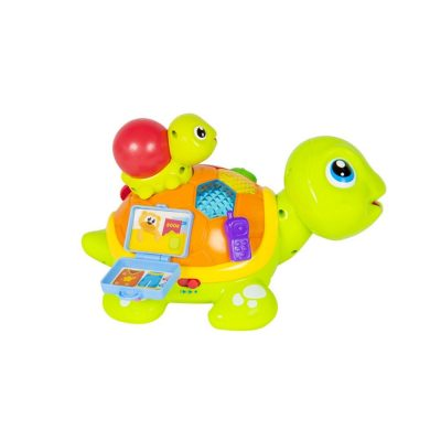 Hola Interactive Adult and Child Turtle 3