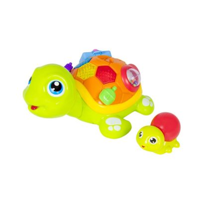 Hola Interactive Adult and Child Turtle 4
